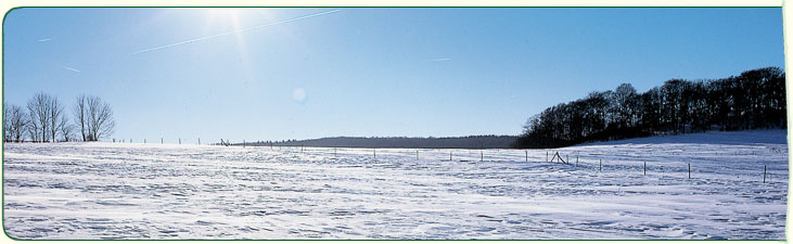 header_winterlandschaft
